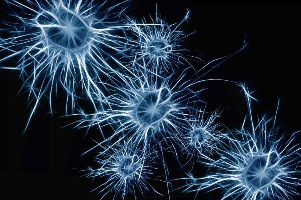neurons with black background